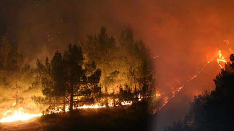 Temmuz yangınları: Daha ne kadar dayanabilir bir insan yüreği bu acımasız katliamlara, bu yangınlara! Dayanamaz, dayanamıyor!