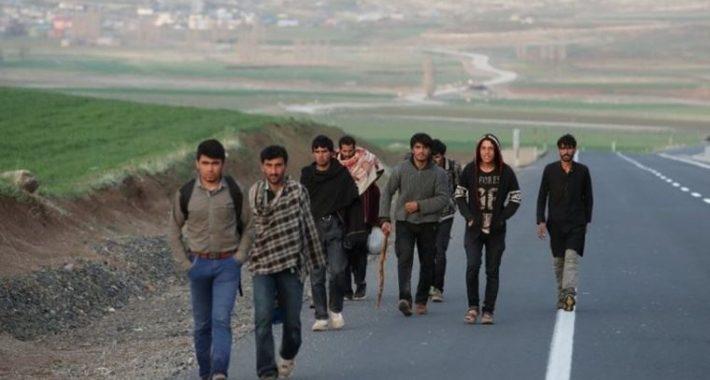 Günümüzde Mülteci Sorununun Kaynağı Emperyalist Kapitalizmdir